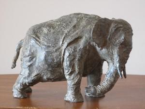 Vieil éléphant