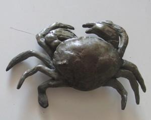 Le petit crabe